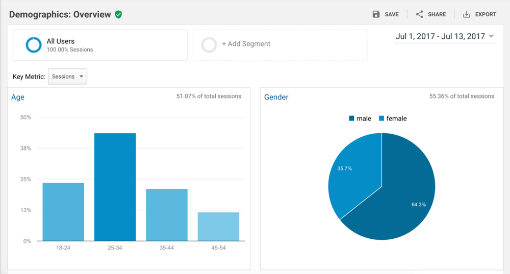 Google Analytics dashboard showing demographics